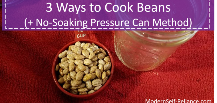 3 Ways to Cook Beans (No Soaking Required)