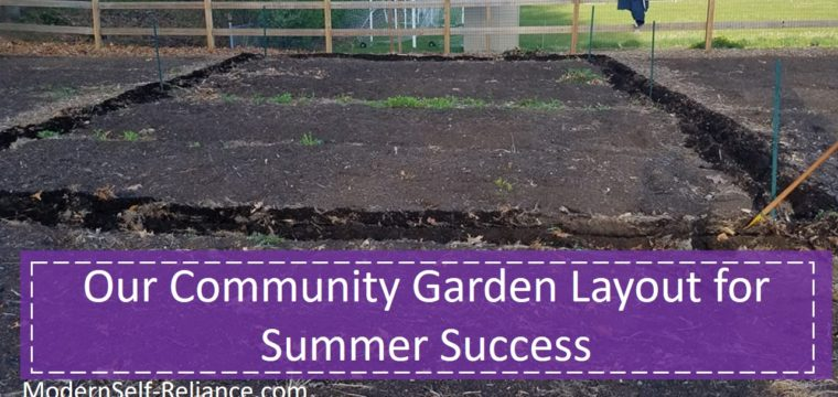 My Community Garden Layout for Summer Success