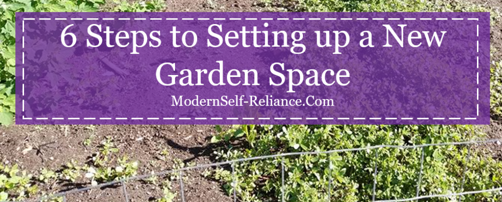 6 Steps to Setting Up a New Garden Space