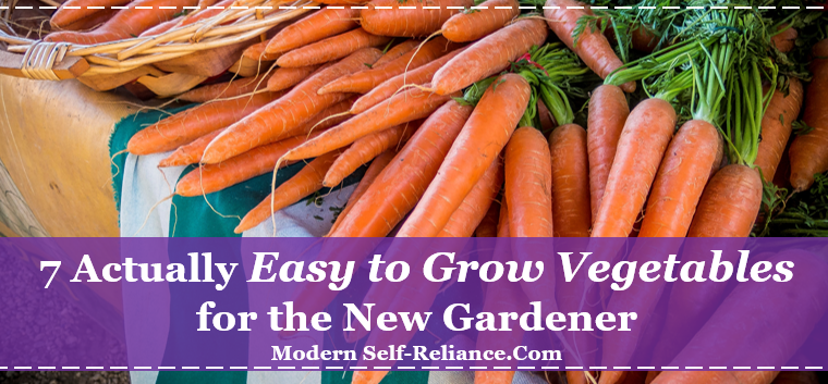 7 Actually Easy to Grow Vegetables for the New Gardener