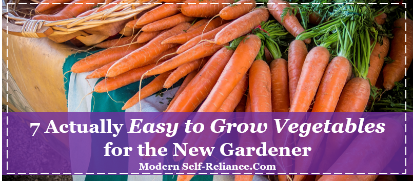 easy to grow vegetables