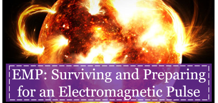 7 Core Principles for Surviving an EMP