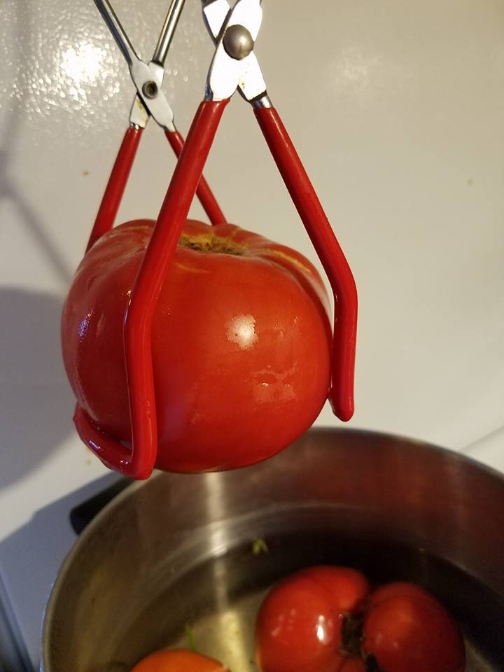 Using a jar lifter to lift tomatoes.