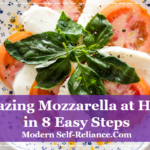 Amazing Mozzarella at Home in 8 Easy Steps