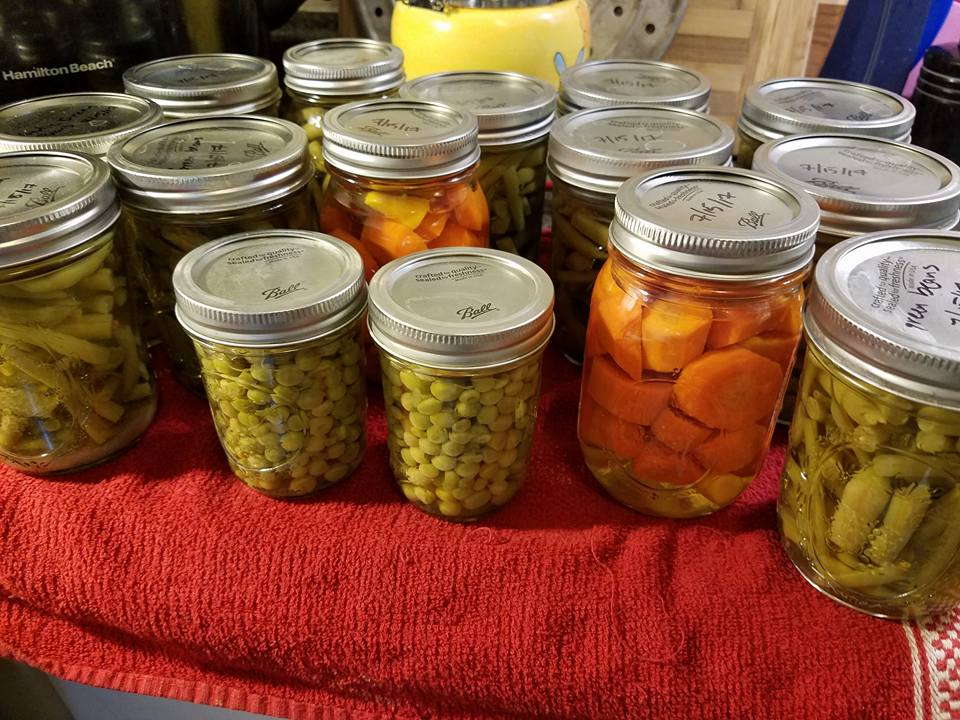 pressure canning green beans and carrots