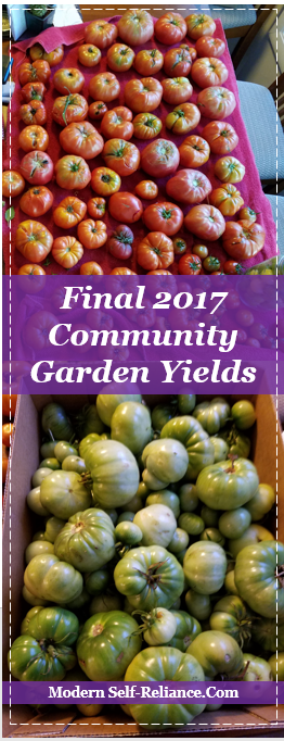 Vegetable yields from 600sqft community garden.