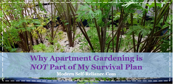 Why Apartment Gardening is NOT Part of My Survival Plan