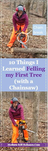 10 Things I Learned Felling my First Tree with a Chainsaw | Modern Self-Reliance