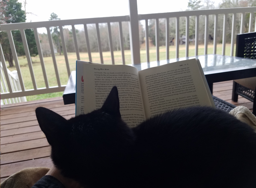 Taste of the Southern Way: Front porch, Char the cat, and a good book