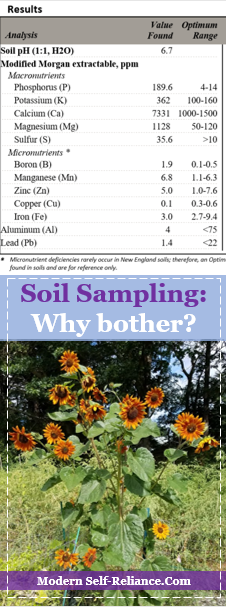 Soil Sampling for Your Garden | Modern Self-Reliance