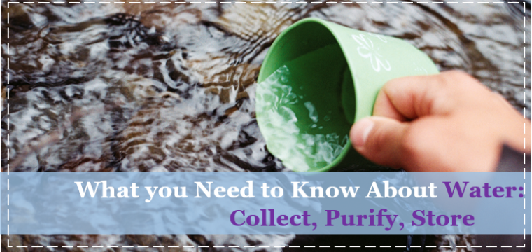 What you Need to Know About Water: Collect, Purify, Store