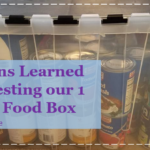 8 Lessons Learned while Testing our 1 Month Food Box